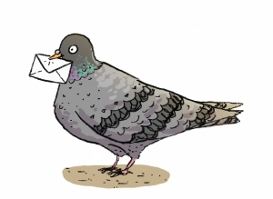 post pigeon copy